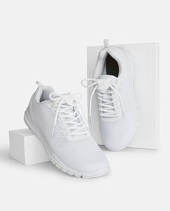SLA_white_box